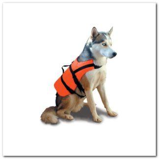 ayuda flotabilidad mascota